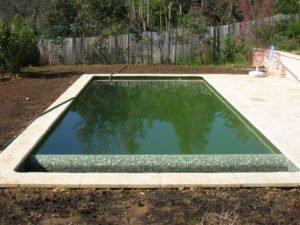 piscine-verte